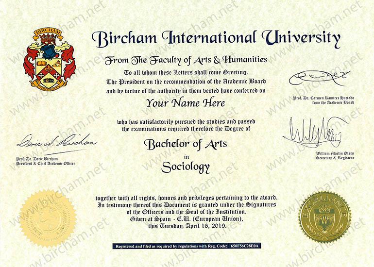 Bachelor (Título Superior)